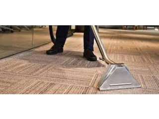 Top Rated Upholstery Cleaning Firm in Sunshine Coast